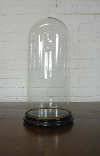 Late Victorian Glass Dome on Ebonised Stand no.1 (1 of 1)