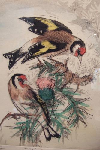 "David Koster ""Goldfinches"" (1 of 1)"