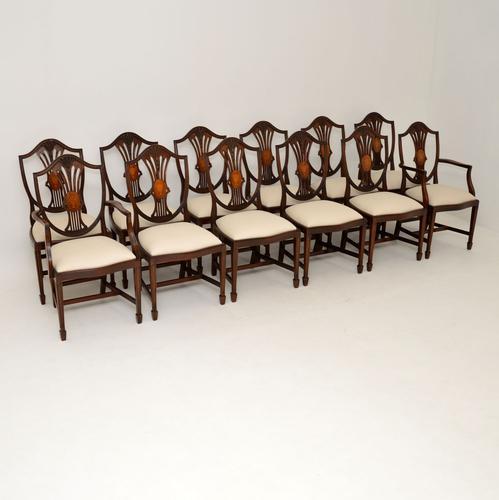 Set of 12 Mahogany Shield Back Dining Chairs (1 of 13)