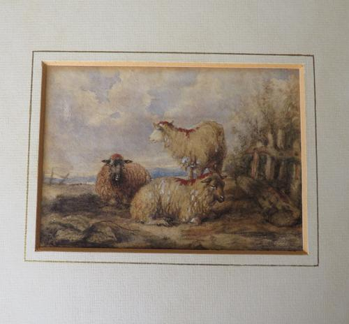Sheep in a Landscape Attr. Thomas Sidney Cooper (1 of 3)