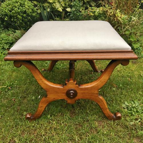 X -Frame Stool in Rosewood English c.1840 (1 of 1)