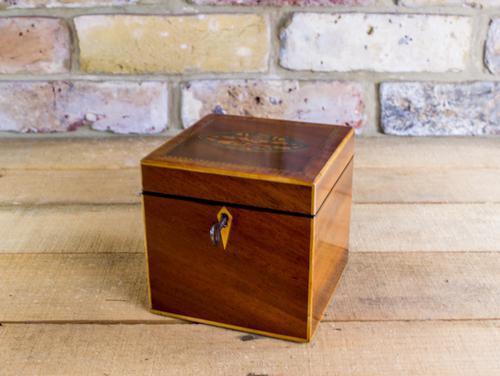Single Mahogany Tea Caddy C.1800 (1 of 1)