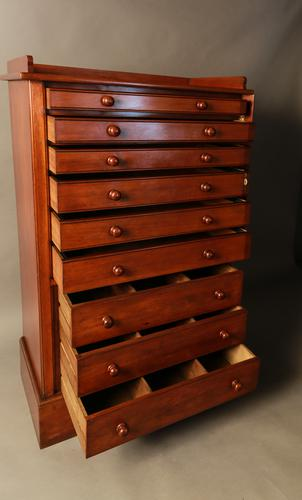 Large Collectors Cabinet c.1900 (1 of 1)