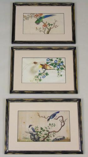 Antique Chinese Pith Painting Birds Set of Three (1 of 8)