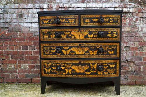 Butterflies on a Victorian Chest c.1880 (1 of 1)