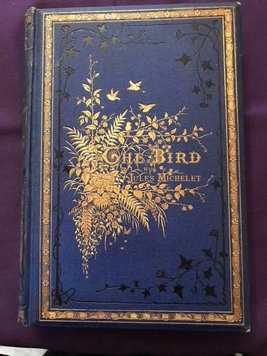 The Bird by Jules Michelet (1 of 1)