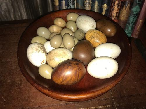 Collection of Antique Hen Brooding Eggs (1 of 1)