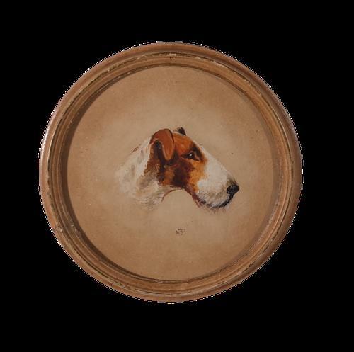 Fox Terrier (1 of 2)