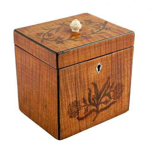 18th Century Satinwood Tea Caddy (1 of 8)