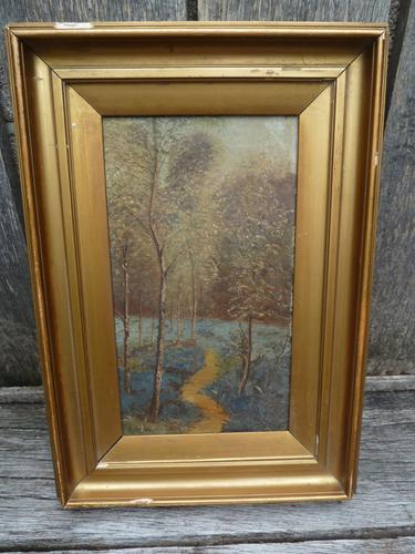 Good 19th Century Wooded Footpath Oil - Signed 'A.M.W' (1 of 5)