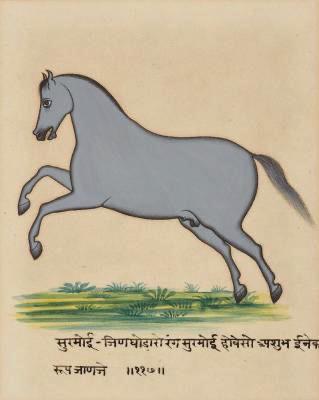 Portrait of Horses (1 of 1)