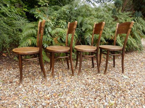 4 Thonet Chairs, Crocodile Patten, Polish (1 of 9)