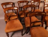 Set of 8 William IV Dining Chairs  Mahogany (11 of 12)