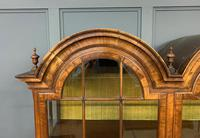 Burr Walnut Double Dome Topped Display Cabinet (5 of 18)