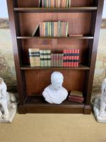 Superb Large 19th Century Mahogany Open Bookcase (7 of 8)