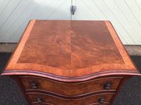 Antique Burr Walnut Bedside Chest (8 of 8)
