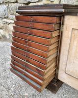 Georgian Collectors Tabletop Specimen Cabinet (25 of 26)