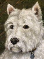 20th Century Oil Painting Animal Portrait Highland Westie White Terrier Dog (4 of 12)