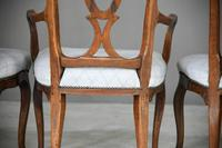 Set of 6 + 1 Continental Dining Chairs (12 of 12)