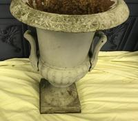 Pair of Cast Iron Garden Urns (6 of 7)