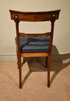 Set of Six William IV Dining Chairs (6 of 7)