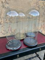 Set off Four 19th Century Glass Domes (2 of 2)