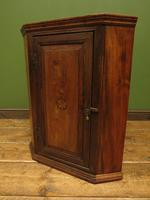 Antique Georgian Elm Corner Cabinet of Modest Proportions & Lovely Character (8 of 13)