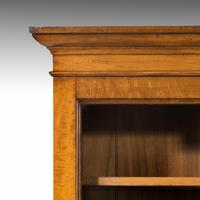 Very Good Early 19th Century Bookcase of Good Size (5 of 6)