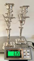 Pair of Edwardian Silver Plated Candelabra (6 of 12)