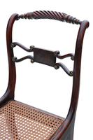 Set of 8 Regency faux rosewood dining chairs 19th Century (6 of 7)