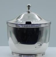 George III Mustard Pot with Spoon (3 of 10)
