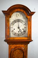 Top Quality Burr Walnut Grandmother or Dwarf Grandfather Longcase Clock with EMBEE Peerless 8 Day Westminster Chiming Musial Clock