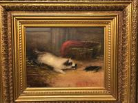 """Pair Victorian 19th Century Sporting Hunting Oil Paintings Terrier Dogs """"Ratting"""" Signed J Langlois (2 of 12)"""