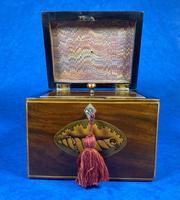 18th Century Mahogany  Shell Inlaid Tea Caddy (8 of 18)
