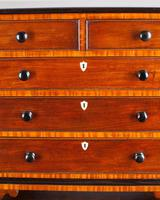 Regency Mahogany Miniature Chest of Drawers (5 of 6)