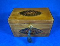 Late 18th Century Fruitwood and Applewood Twin Tea Caddy (4 of 21)