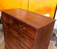 Georgian Chest of Drawers Mahogany Country Tallboy George IV (7 of 11)