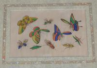 Fine Antique Pair of Chinese Paintings Butterflies & Insects on Pith (3 of 10)