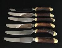 Cased  Set of 6 Stag Horn Handle Steak Knives (3 of 6)