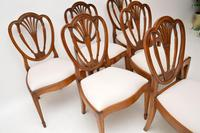Set of 6 Antique Mahogany Sheraton Style Dining Chairs (9 of 9)