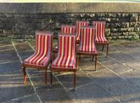 Antique French Regency Jeanselme Rosewood Dining Chairs (5 of 11)