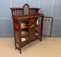 Shapland & Peter Mahogany Display Cabinet (14 of 16)