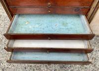 Georgian Collectors Tabletop Specimen Cabinet (17 of 26)