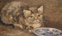 Charming Oil Painting of a Cat (6 of 7)