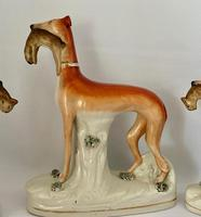 Superb Trio of Staffordshire Whippets c.1850 (8 of 13)