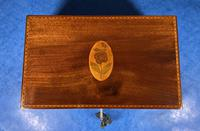 George III Solid Mahogany Box With Wonderful Inlaid Panels (7 of 18)