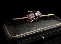 Victorian Beetle Brooch, Moonstone, Diamond, Ruby & Garnet, 15ct Gold, Boxed (4 of 12)