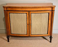 George III Satinwood Chiffonier Side Cabinet (2 of 9)