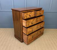 Victorian Burr Walnut Chest of Drawers (6 of 13)