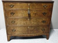 Regency Mahogany Chest of Four Drawers (8 of 8)